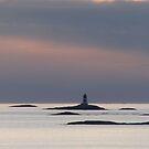 Norwegian Light by Linda Ridpath