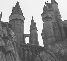 Hogwarts Castle by dkelly1126