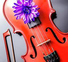 Artistic Poetic Violin by MMPhotographyUK