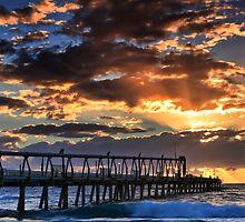 Morning Glory by Ann  Van Breemen