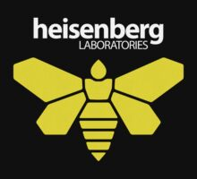Heisenberg Laboratories by squidgun