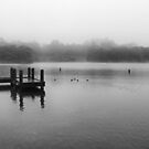 Wentworth Falls Lake in Mist by Geoff Smith
