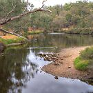 Blackwood at the Ford, Bridgetown, W. Australia #2 by Elaine Teague