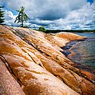 Rocky shore of Georgian Bay by Elena Elisseeva