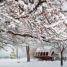 winter bliss by John Poon