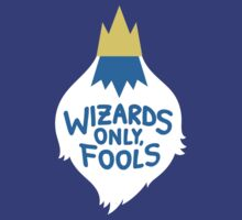 Wizards Only, Fools by amandaflagg