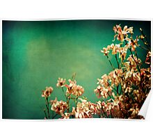 Dreamy Pink Magnolias Poster