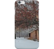 Snowflakes Dance 2 iPhone Case/Skin