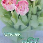 Welcome to Spring by Amar-Images