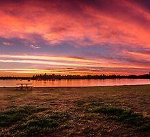 Pretty In Pink - Brays Bay Reserve by gerryligon