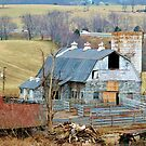 Farm In Virginia  by Cynthia48