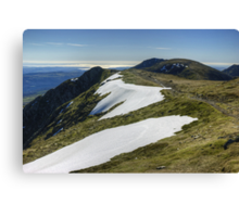 The Ascent Of Swirl How Canvas Print