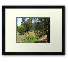 Australian Country Scene 4 Framed Print
