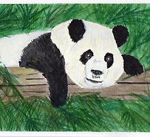 Playful Panda by Joanne Thomas