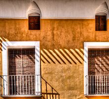 LInes on windows by marcopuch