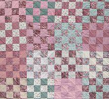 Desert Rose Squares by Jean Gregory  Evans