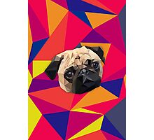 This pug loves you Photographic Print