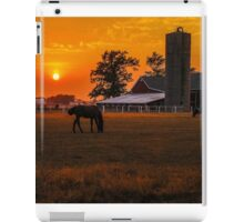 The Beauty of a Rural Sunset iPad Case/Skin