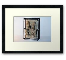 Pinpressions Art Photography Print Framed Print
