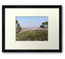 Views from Spring Gully Cons. Red Stringybark forest. Clare S.A. Framed Print