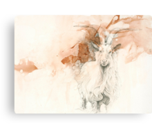 Chinese Zodiac - The Goat Canvas Print