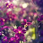 Purple Flowers by Yincinerate
