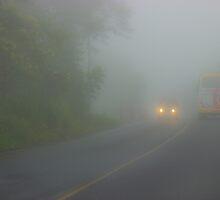 Fog In The Andes Near Santo Domingo by Al Bourassa