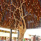 The Tree of Knowledge by Penny Smith