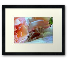Roses, Parfum, And Lace Framed Print
