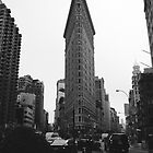 FLAT IRON BUILDING NYC - BLACK & WHITE by humansvsrobots
