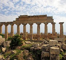 Selinunte Temple Of Apollo by Francis Drake