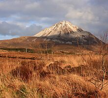 Mount Errigal From The West by Adrian McGlynn