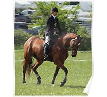Dressage Horse Working The Arena Poster