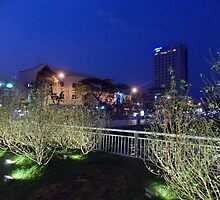 Sakura with Da nang by Richy68