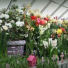 Flower Show Time! by Linda Jackson