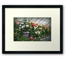 Flower Show Time! Framed Print
