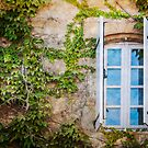 Window  by Jacinthe Brault