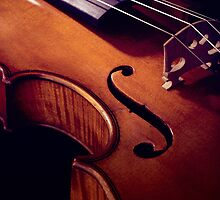 Old rare violin with dark background by Pixmover