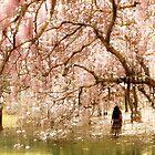 Magnolia Impressions by Jessica Jenney