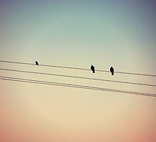 birds on a wire 2 by alanaslens