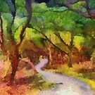 Muckross Woods (2) by Michael Walsh