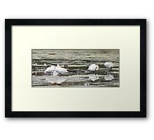 Yoga Class by Elisabeth and Barry King™ Framed Print
