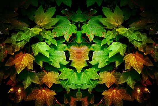 Leafael by Yampimon