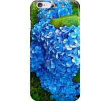 Nature03 iPhone Case/Skin