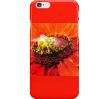 Pollination of Red Flower iPhone Case/Skin
