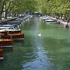 Annecy Swan by Capture the Course Photography by Pikachunicorn