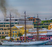 S&R TRAINING VESSEL.. by buddybetsy
