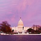 Capitol Building, Washington D.C. by Steven  Lippis