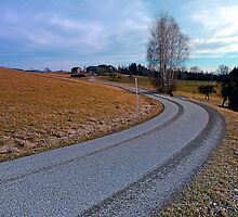 Country road into far distance | landscape photography by Patrick Jobst