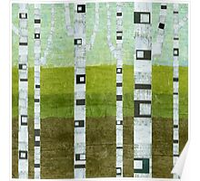 Summer Birches Poster